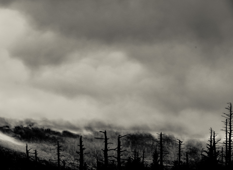 Smoky Mountains 94
