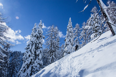 02 14 Skiing from Visarje