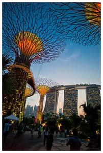 My Singapore