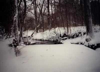 1993 Snow Storm
