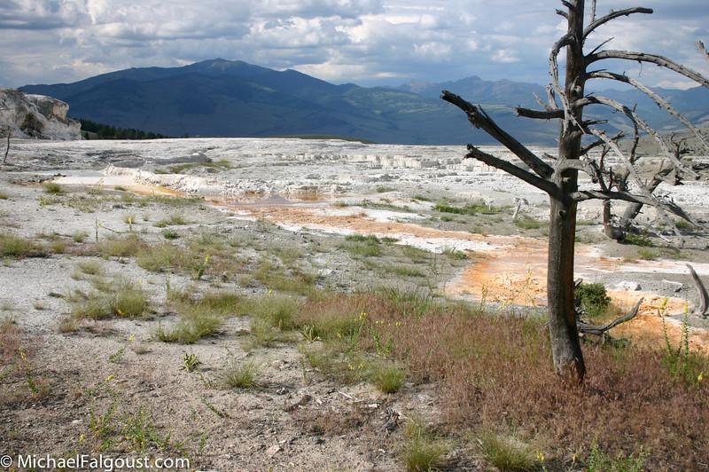 Yellowstone-042.jpg