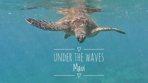 Under the Waves Maui