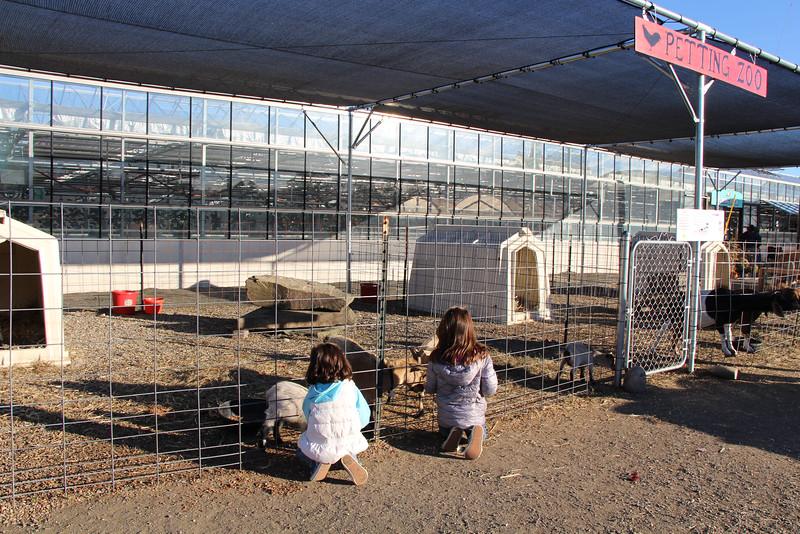Secco Farm 091.JPG
