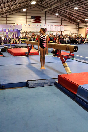 Session 3 : Saturday 01/28/2017 : Level 3 (Ages 7 and younger, 10 and older), Xcel Silver