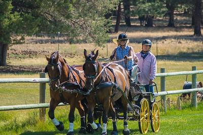 Durdan Horse Cart Seminars