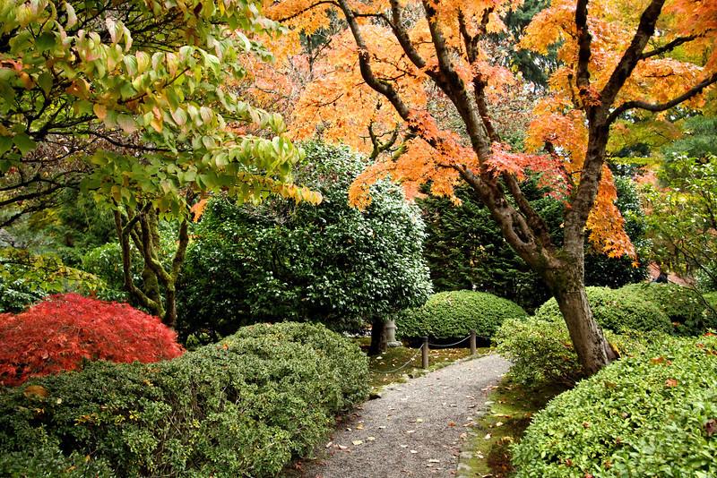 Portland Japanese Garden  11-11-11  3554.jpg