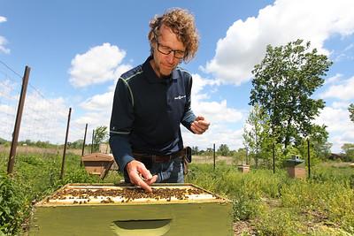 20170530 - LCJ Beekeeper (hrb)