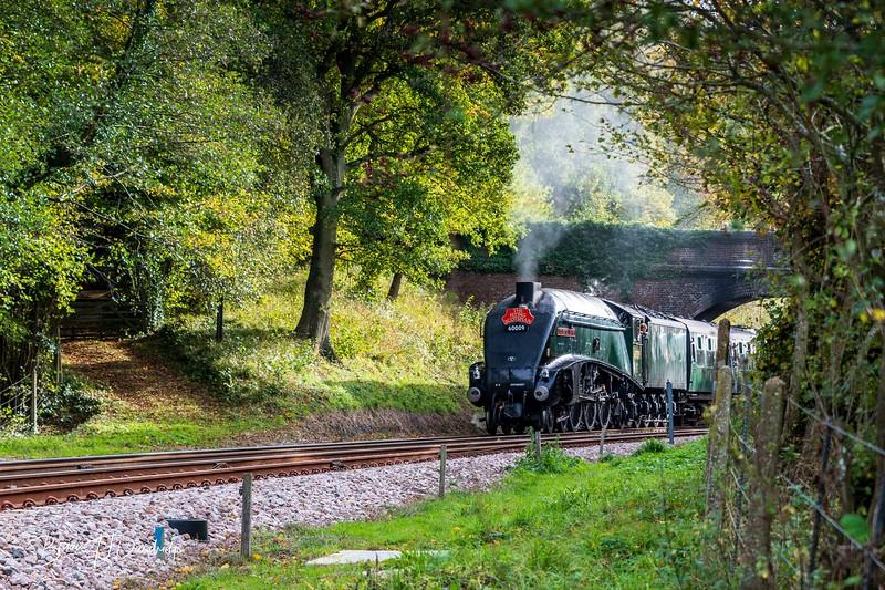 Bluebell Railway - Giants of Steam-4619-1.jpg