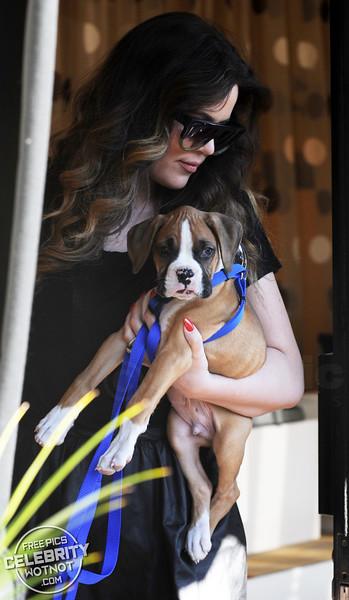 Khloe Kardashian Shows Off Boxer Puppy Bee!