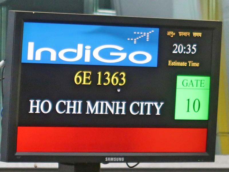IMG_8870-indigo-6e1363.jpg