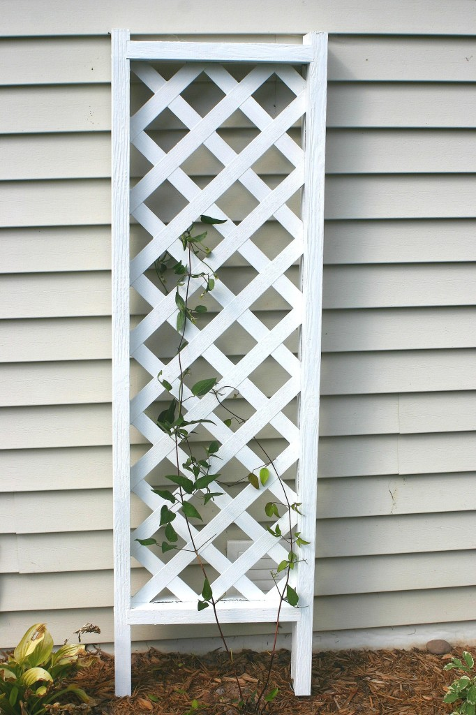 Finished Recycled Trellis for Clematis