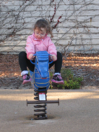 Around the Neighborhood 2012