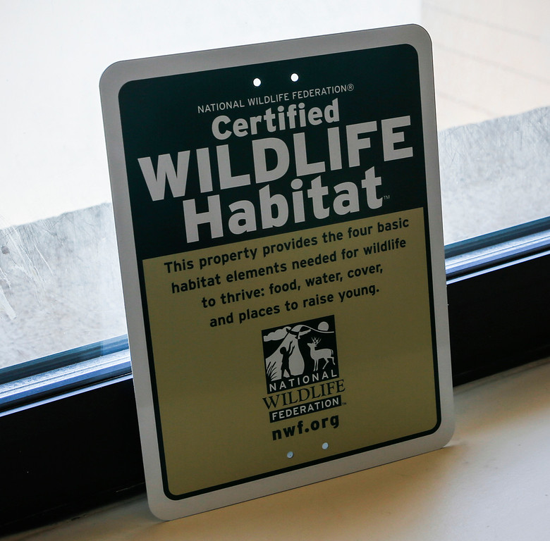 """. A sign posted in the hotel room where a barn owl sits in a nest outside the window at the San Francisco Airport Marriot Waterfront on Wednesday, July 31, 2013. The hotel has made special accomodations for its guest, and was recently given a \""""Certified Wildlife Habitat\"""" designation from the National Wildlife Federation. (John Green/Bay Area News Group)"""