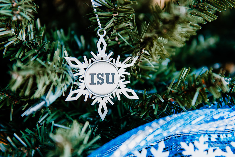 DSC_8693 holiday December 17, 2019.jpg