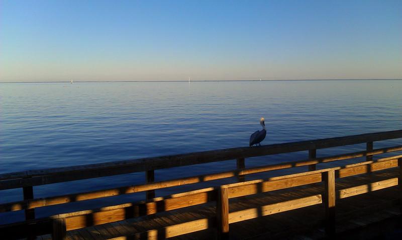 Florida Jan 2012