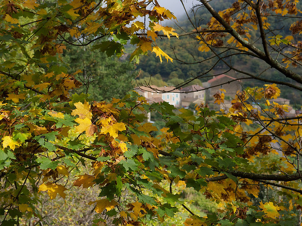Ardèche & Drôme provençale