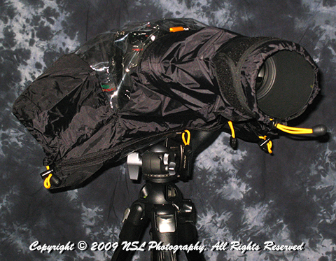 Camera and lens protected from rain on tripod by NSL Photography