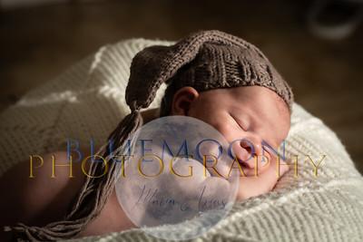 Amanda's Newborn & Family