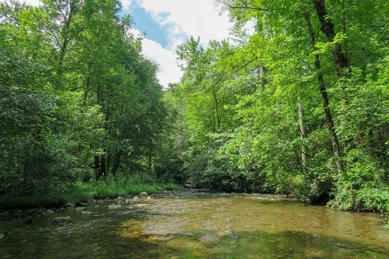 North Fork Mills River (Crossing #1) -- 2,310'