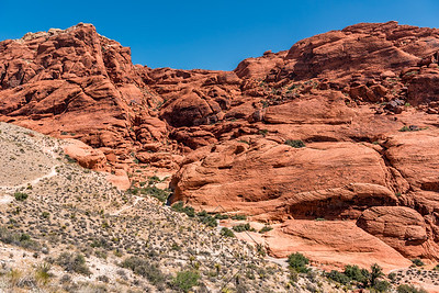 Red Rock Canyon_3335