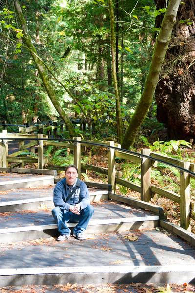 Muir Woods Nov 2011