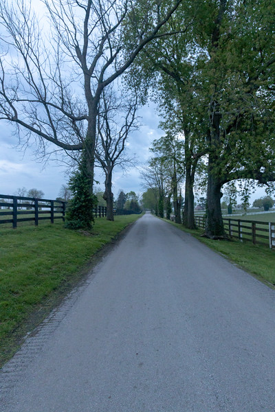 Manchester Horse Farm Lexington KY  April 25, 2019   005.jpg