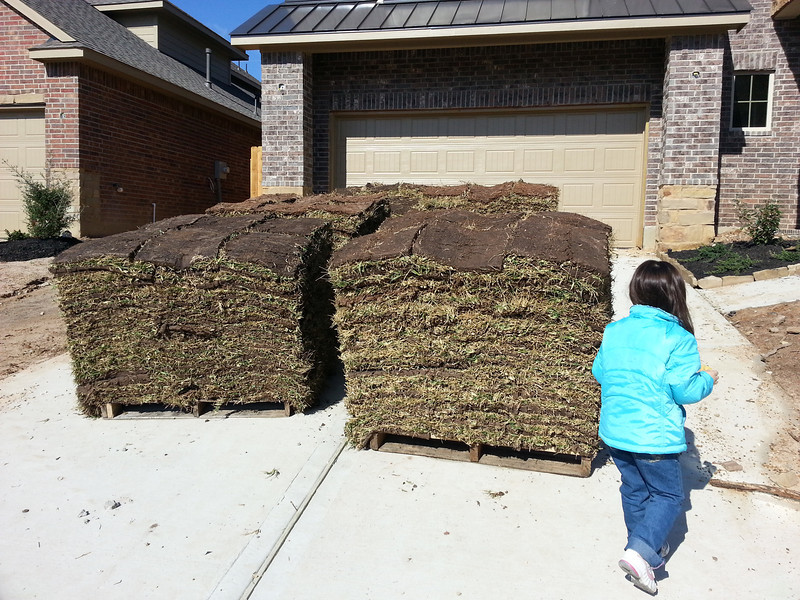 That's a big pile of grass..  and a little girl.