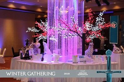 MPI Winter Gathering 2018