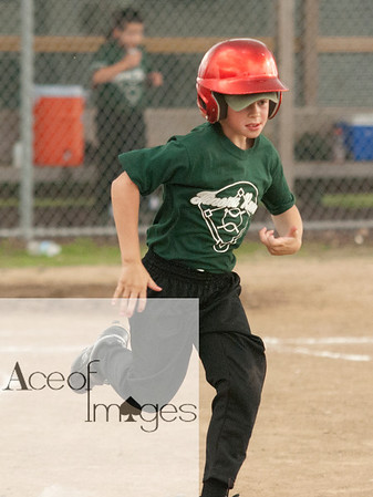 D. Flory baseball 2011