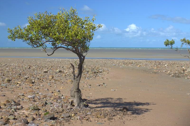 Queensland_0222.jpg
