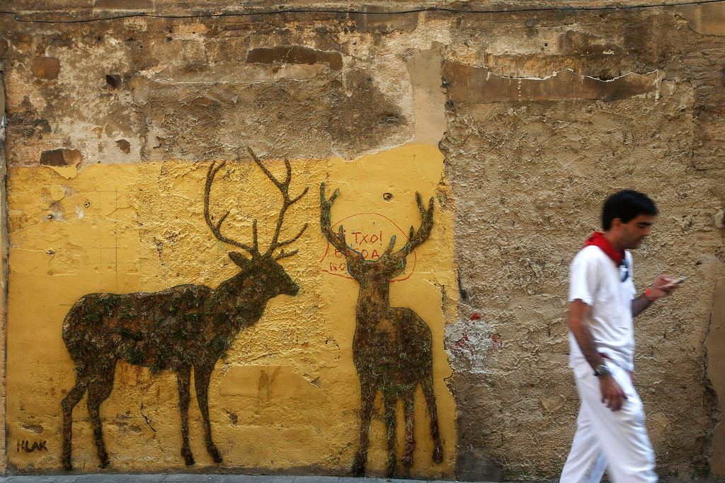 . A man dressed in traditional San Fermin attire walks a mural of two deers made out of grass in Pamplona July 11, 2013. REUTERS/Susana Vera