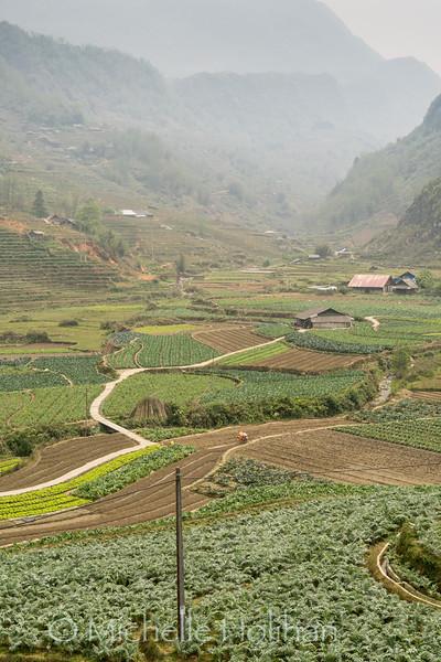 Mường Hoa Valley, Sapa, Vietnam