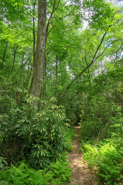 Riverside Trail -- 2,380'