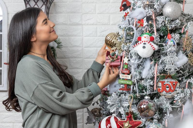 12.18.19 - Vanessa's Christmas Photo Session 2019 - 35.jpg