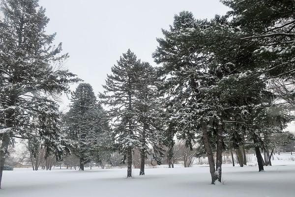 Winter Drive 2018