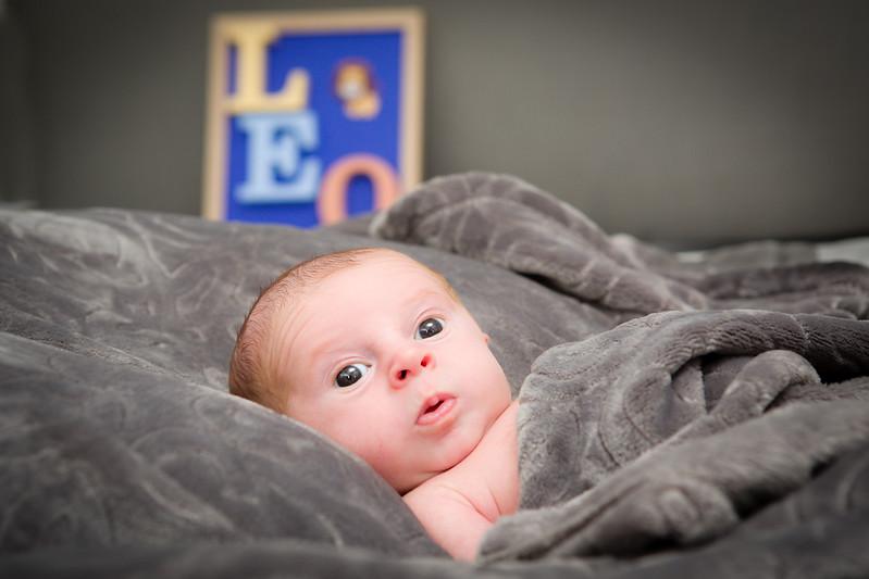 BabyLeo-13.jpg