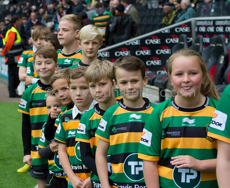 Mascots, Northampton Saints vs Newcastle Falcons, Aviva Premiership, stadium:MK, 24 October 2015