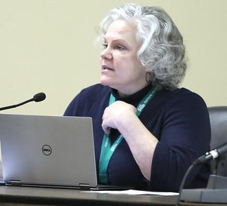 021020 Lyn Fazekas at the DeKalb City Council meeting