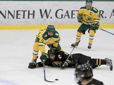 FSU Hockey, January 12, 2019