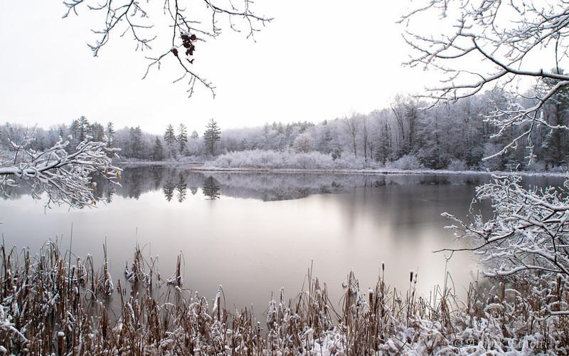 First Snow-13.jpg