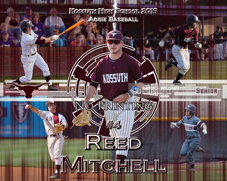 Reed Mitchell Collection