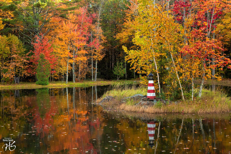 Fall Landscape in Mid-Coast Maine