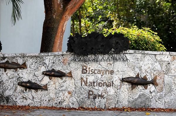 Biscayne National Park 2.18.19