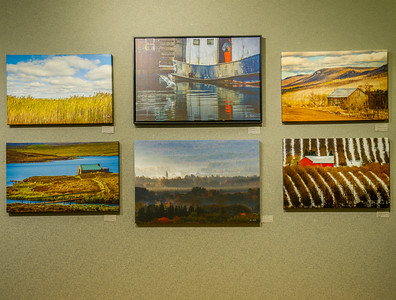 LES Gallery Show At THE Thornbury Library