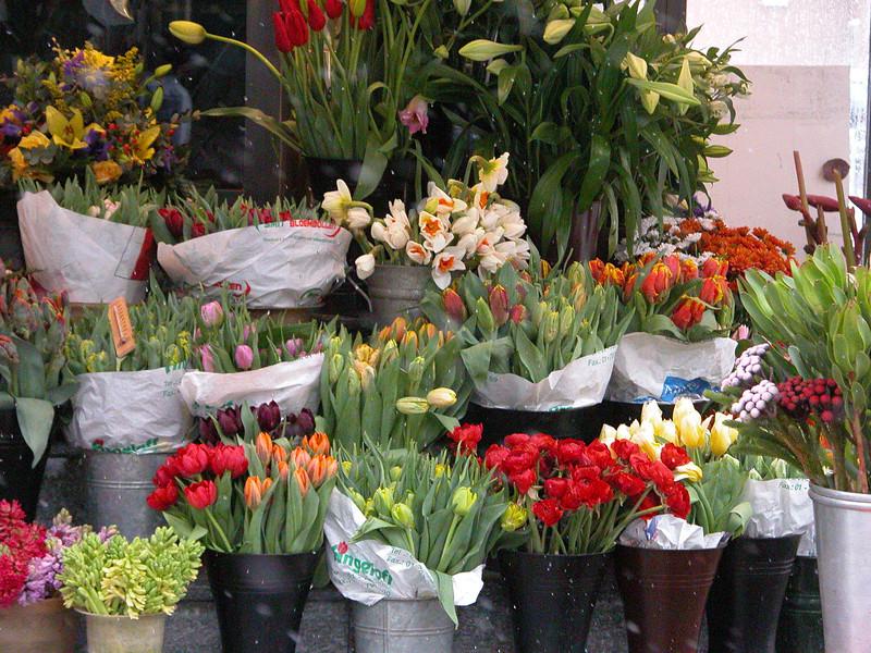 Vienna Flower Market.jpg
