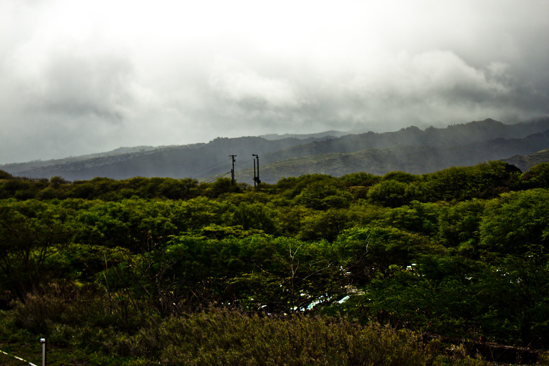 Journey into Oahu Photograph 173