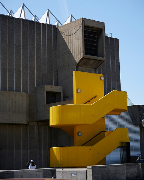 Yellow Southbank.jpg