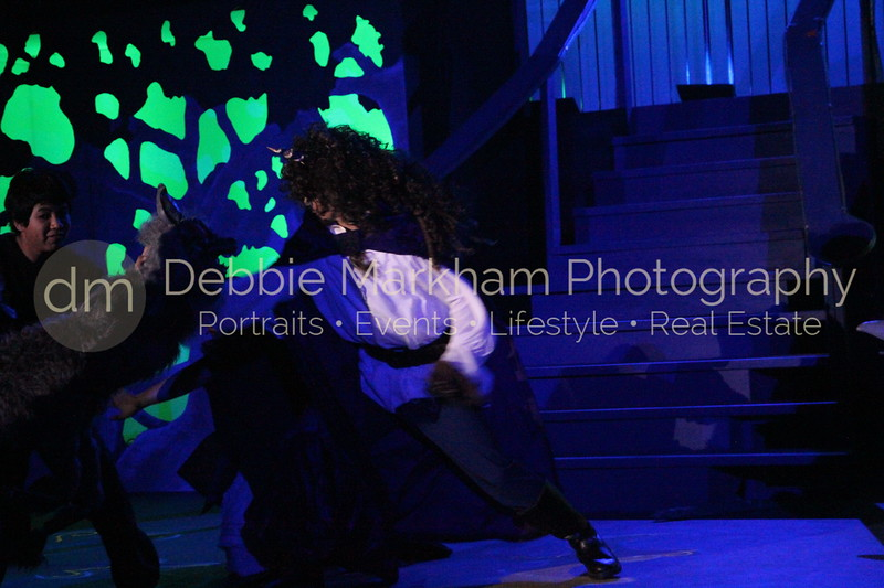 DebbieMarkhamPhoto-Opening Night Beauty and the Beast413_.JPG