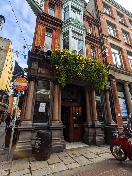 Dublin Staghead Pub 2.jpg