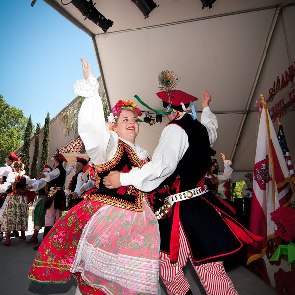 2014 Houston Polish Festival